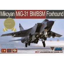 1:48 MiG-31BM/BSM Foxhound Limited Edition (with upgrade set)