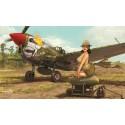 PRE-ORDER Warhawk 1/32