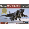 1:48 MiG-31BM/BSM Foxhound Limited Edition (with upgrade set)