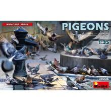 Pigeons 1:35