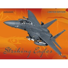 Striking Eagles 1/48 Limited Edition