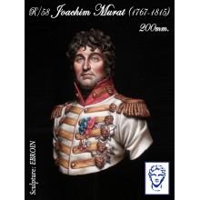Joachim Murat, Napoleonic Wars