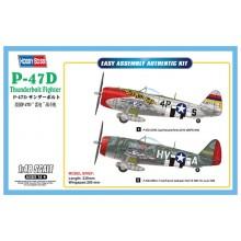 1:48 P-47D Thunderbolt Fighter
