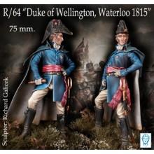 Duke of Wellington at Waterloo, 1815