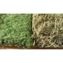 Escenografía - Vegetación